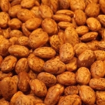 Pinto Beans Small Quantity - Click here to view and order this product