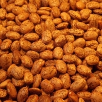 Pinto Beans Large Quantity - Click here to view and order this product