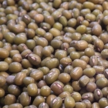 Mung Beans Small Quantity - Click here to view and order this product